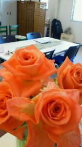 今日のふじえだオフィスはオレンジのバラ